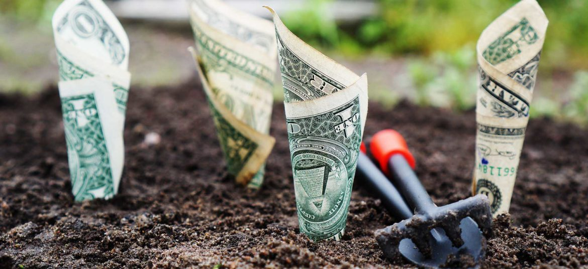 Basics of Economics. Dollars growing from the ground
